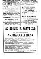 giornale/BVE0268455/1894/unico/00000035