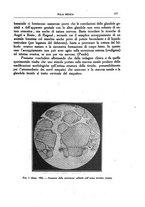 giornale/CFI0354704/1928/unico/00000191