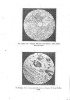 giornale/CFI0354704/1928/unico/00000192