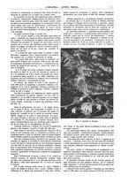 giornale/CFI0356408/1910/unico/00000009
