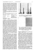 giornale/CFI0356408/1940/unico/00000031