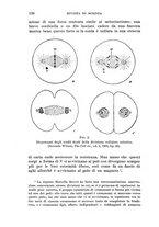 giornale/CFI0364592/1907/V.2/00000142