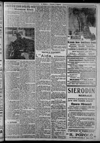 giornale/CFI0375871/1925/n.31/003