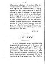 giornale/CFI0431656/1881/unico/00000078