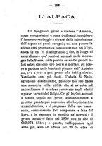 giornale/CFI0431656/1881/unico/00000206