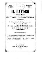 giornale/CFI0431656/1881/unico/00000213