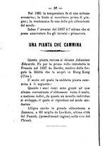 giornale/CFI0431656/1882/unico/00000038