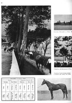 giornale/MIL0286546/1944/unico/00000070