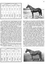 giornale/MIL0286546/1944/unico/00000071