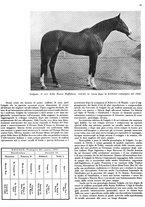 giornale/MIL0286546/1944/unico/00000075
