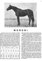 giornale/MIL0286546/1944/unico/00000077
