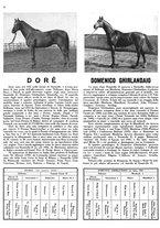 giornale/MIL0286546/1944/unico/00000080