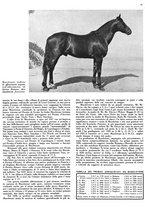 giornale/MIL0286546/1944/unico/00000103