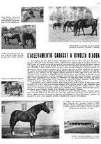 giornale/MIL0286546/1944/unico/00000105