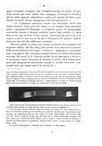 giornale/PUV0109343/1905/V.27.2/00000071