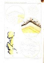 giornale/PUV0109343/1905/V.27.2/00000180