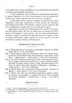 giornale/PUV0109343/1905/V.27.2/00000181