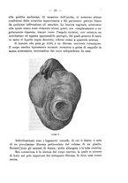 giornale/PUV0109343/1908/V.30.1/00000017