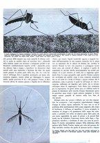 giornale/RML0021505/1939/unico/00000048