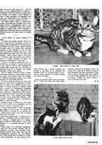 giornale/RML0021505/1939/unico/00000129