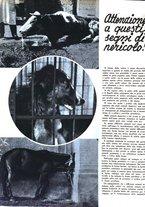giornale/RML0021505/1939/unico/00000146