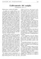 giornale/RML0024944/1936/unico/00000039