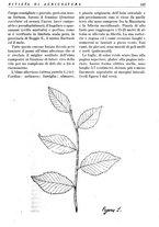giornale/RML0024944/1936/unico/00000133