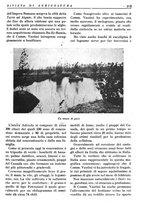 giornale/RML0024944/1936/unico/00000153