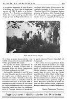 giornale/RML0024944/1936/unico/00000155