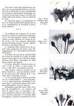 giornale/RML0024944/1939/unico/00000031