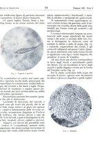 giornale/RML0024944/1939/unico/00000065