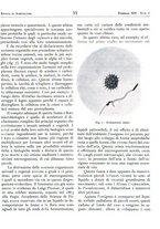 giornale/RML0024944/1939/unico/00000067