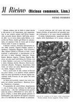 giornale/RML0024944/1939/unico/00000111