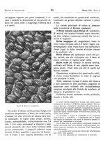 giornale/RML0024944/1939/unico/00000112