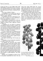 giornale/RML0024944/1939/unico/00000115