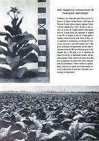 giornale/RML0024944/1939/unico/00000186