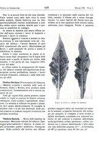 giornale/RML0024944/1939/unico/00000193