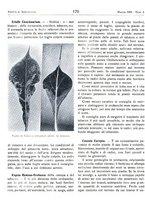 giornale/RML0024944/1939/unico/00000194