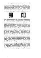 giornale/RMS0044379/1879/unico/00000033