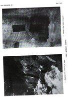 giornale/SBL0509897/1929/unico/00000151