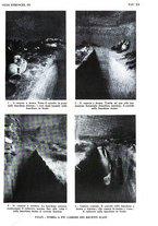 giornale/SBL0509897/1929/unico/00000153