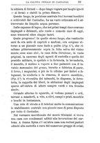 giornale/TO00174387/1903/unico/00000053