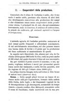 giornale/TO00174387/1903/unico/00000081