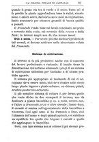 giornale/TO00174387/1903/unico/00000105