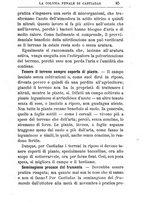 giornale/TO00174387/1903/unico/00000107