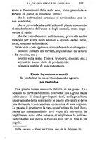 giornale/TO00174387/1903/unico/00000123