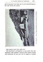 giornale/TO00174387/1903/unico/00000137