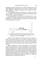 giornale/TO00177025/1921/unico/00000063