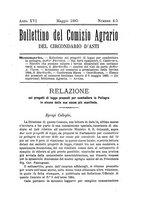 giornale/TO00178885/1885/unico/00000055