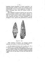 giornale/TO00180507/1898/unico/00000049